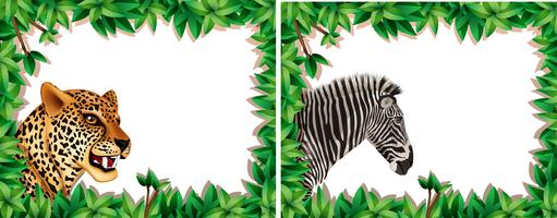 Zebra and leopard on nature frame vector