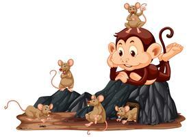 Affe, der Ratte betrachtet