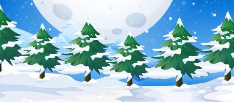 Uma paisagem ao ar livre de inverno