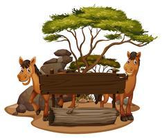 Zwei Pferde am Holzschild