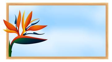 Modello di cornice con fiore uccello del paradiso
