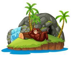 Apa på ön