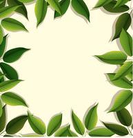 Diseño de marco con hojas verdes.