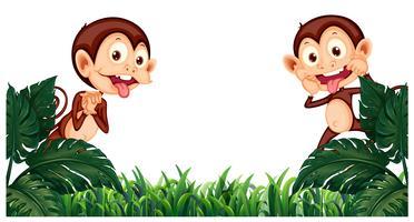 Achtergrondontwerp met twee apen in tuin