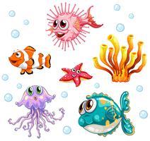 Olika typer av fiskar under vattnet