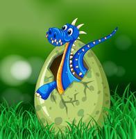 Blå drake kläckande ägg på gräset