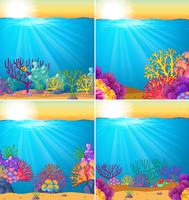 Background scene with coral reef underwater vector