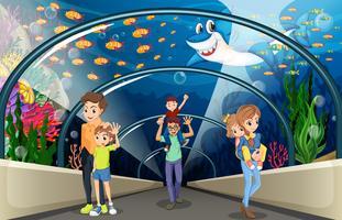 Människor tittar på fisk i akvariet