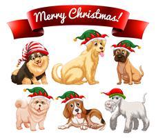 Jul tema med många hundar