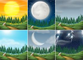 Set of different nature scenes