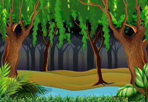 Bosscène met bomen en rivier