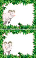 Goat in nature frame collection