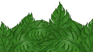 Background design with green leaves vector