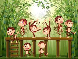 Scène avec des singes dans la forêt de bambous