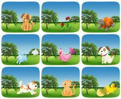 Conjunto de animais na cena ao ar livre