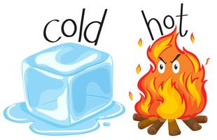 Cold icecube and hot fire vector