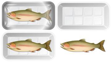 Set of fish in packaging vector