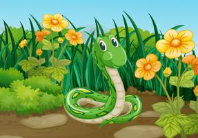 Groene slang in tuin