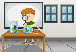 Boy looking at ladybug in classroom