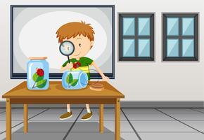 Junge, der Marienkäfer im Klassenzimmer betrachtet