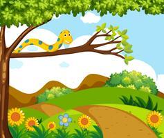 Hintergrundszene mit gelber Schlange auf Niederlassung