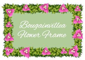 Flores de buganvilla como diseño de marco.