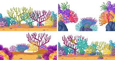 Conjunto de escenas de coral bajo el agua.