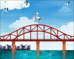 Bambino e gru sul ponte