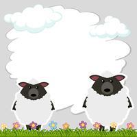 Modello di confine con due pecore