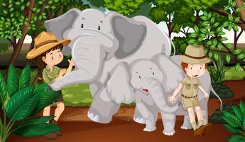 Dois elefantes e crianças na floresta
