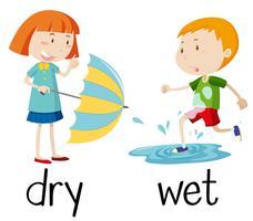 Gegenüberliegende Wordcard für trocken und nass