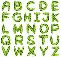 Alphabet design in green leaves