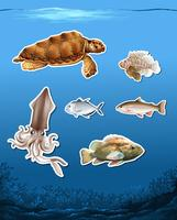 Set of different animals in ocean