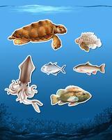Set of different animals in ocean
