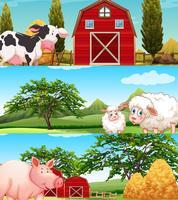 Animales de granja que viven en la granja