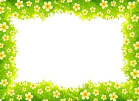 daisy naturramkoncept