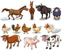 Tipo diferente de animais de fazenda