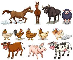 Different kind of farm animals