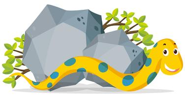 Yellow snake crawling by the stone