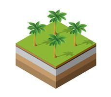 Palm trees natural forest vector