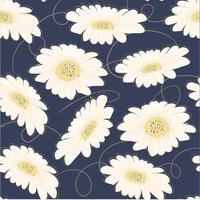 seamless pattern hand drawn white daisy flower vector