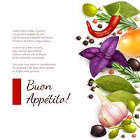 Herbes et épices sur fond blanc