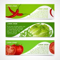 Vegetables banners horizontal