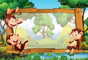 Design de moldura com macacos na floresta
