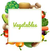 Variouse type of vegetables
