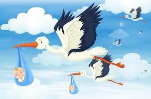 Många fåglar med nyfödda barn i himmelen