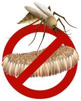 Moustique vecteur