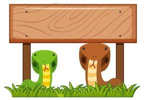 Modelo de placa de madeira com duas cobras por baixo