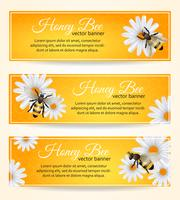 Set di banner di ape