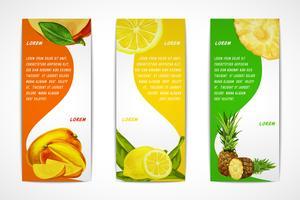 Conjunto de banner vertical de frutas tropicais